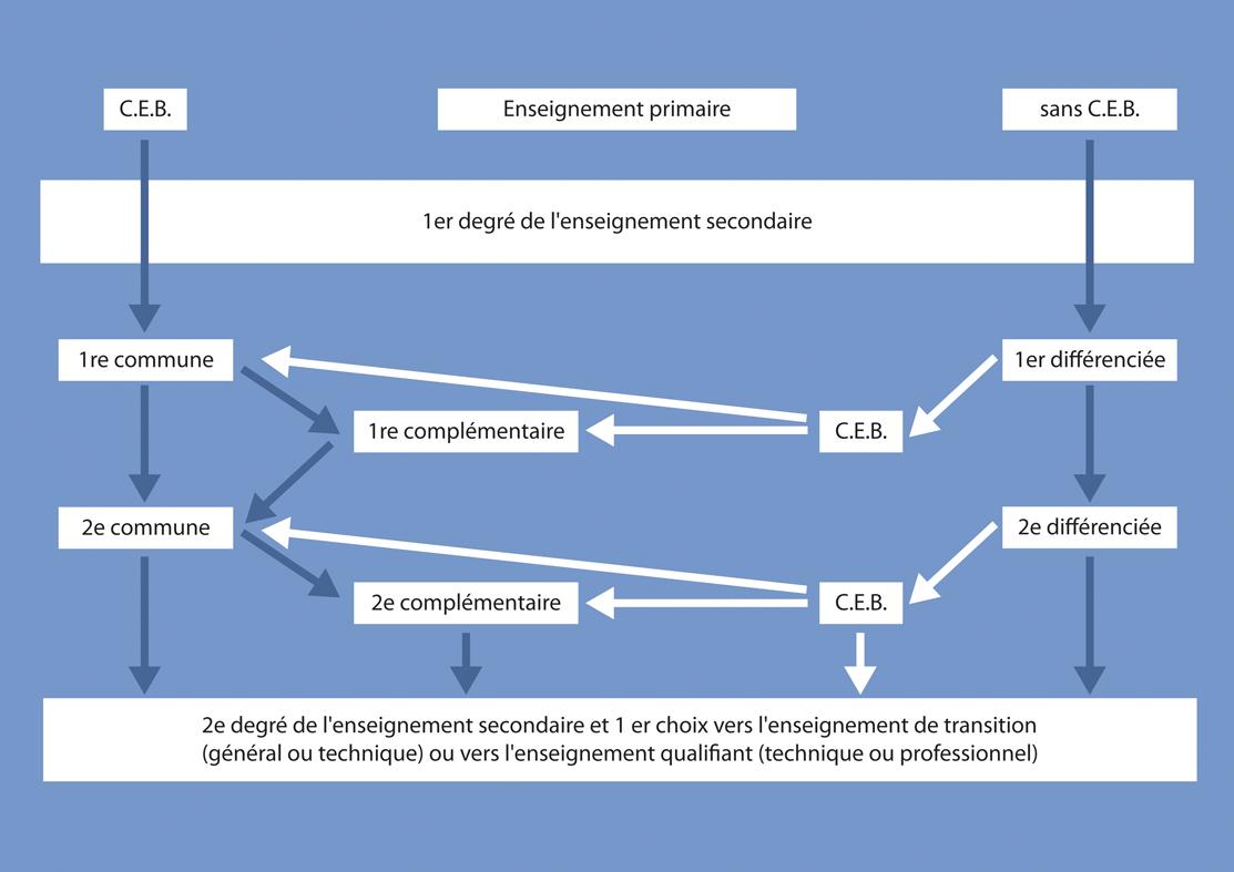 tableau  reprenant les parcours possibles au premier degré (voir en grand)